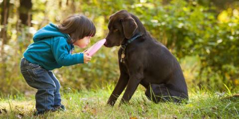 Hunde sprechen eine andere Sprache