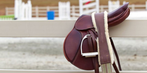 Wie finde ich den passenden Sattel für mein Pferd?
