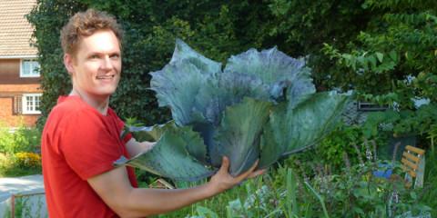Gefahr für den Garten. Verbot für freies Saatgut, bei Strafe!