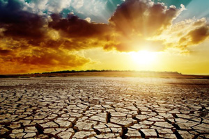 Ohne Wasser gibt's kein Leben  (123rf.com)