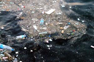 Verschmutzung der Meere mit Plastik
